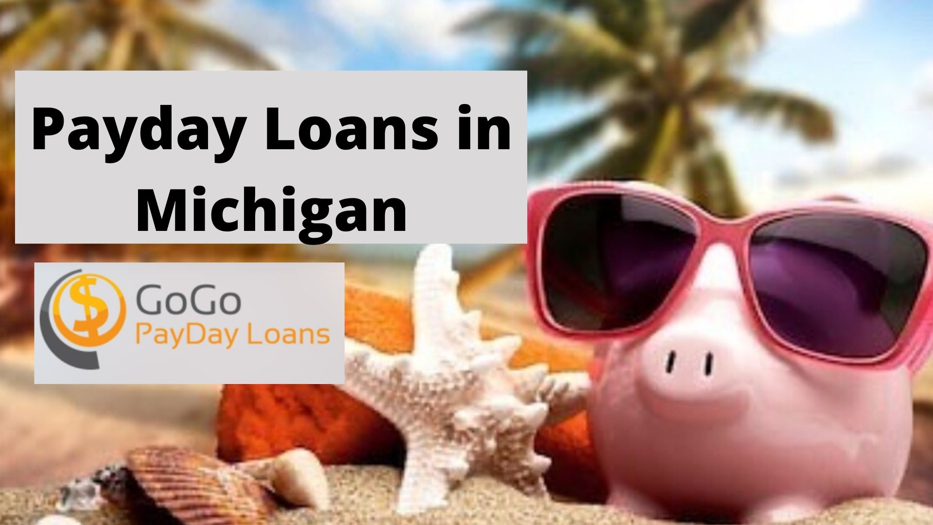 Payday Loans Michigan